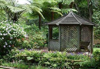lisgar-gardens-380